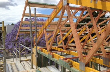 Roof Trusses 12